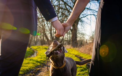 Four great tips for including your dog in your engagement photos