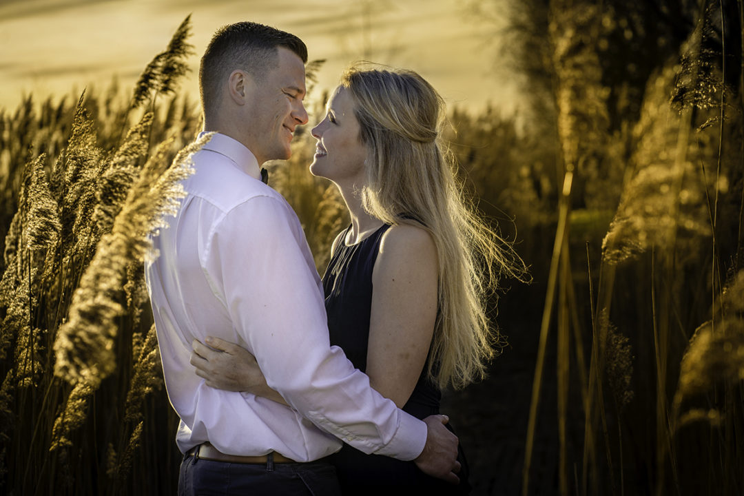 Engagement session in a golden field with couple posing by Washington DC engagement photographers Potok's World Photography