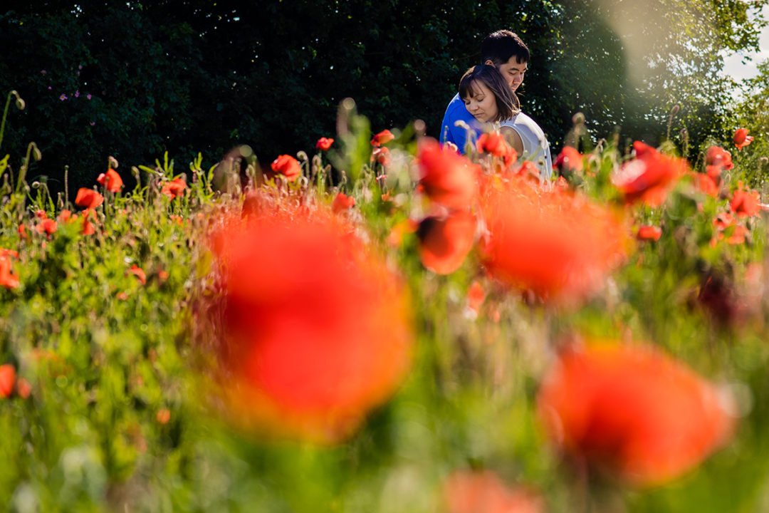 Couple posing amidst red poppy flowers during engagement session by Washington DC wedding and engagement photographers of Potok's World Photography