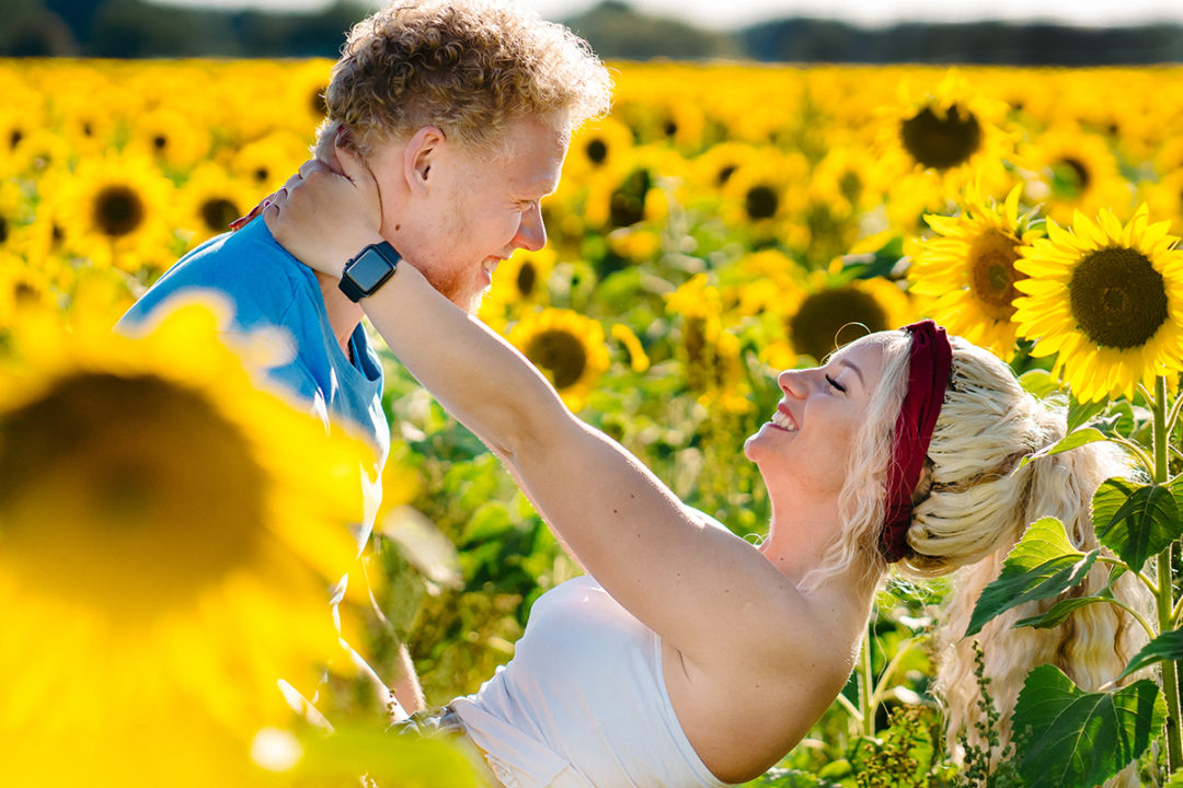 Sunflower field engagement session by northern Virginia wedding photographers of Potok's World Photography