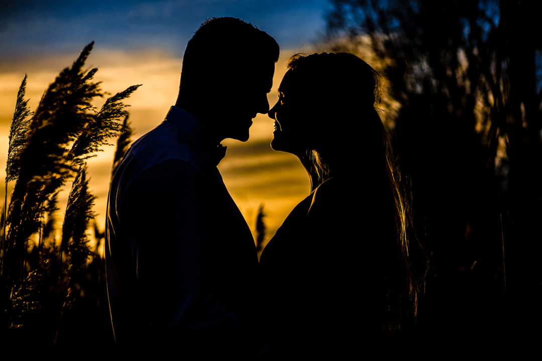 Engagement session in sunflower field silhouette by Northern Virginia wedding photographers of Potok's World Photography